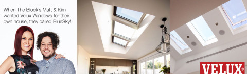 Velux Skylight Windows